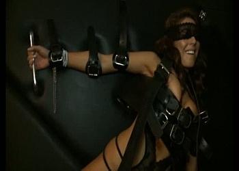 Gina torture wheel